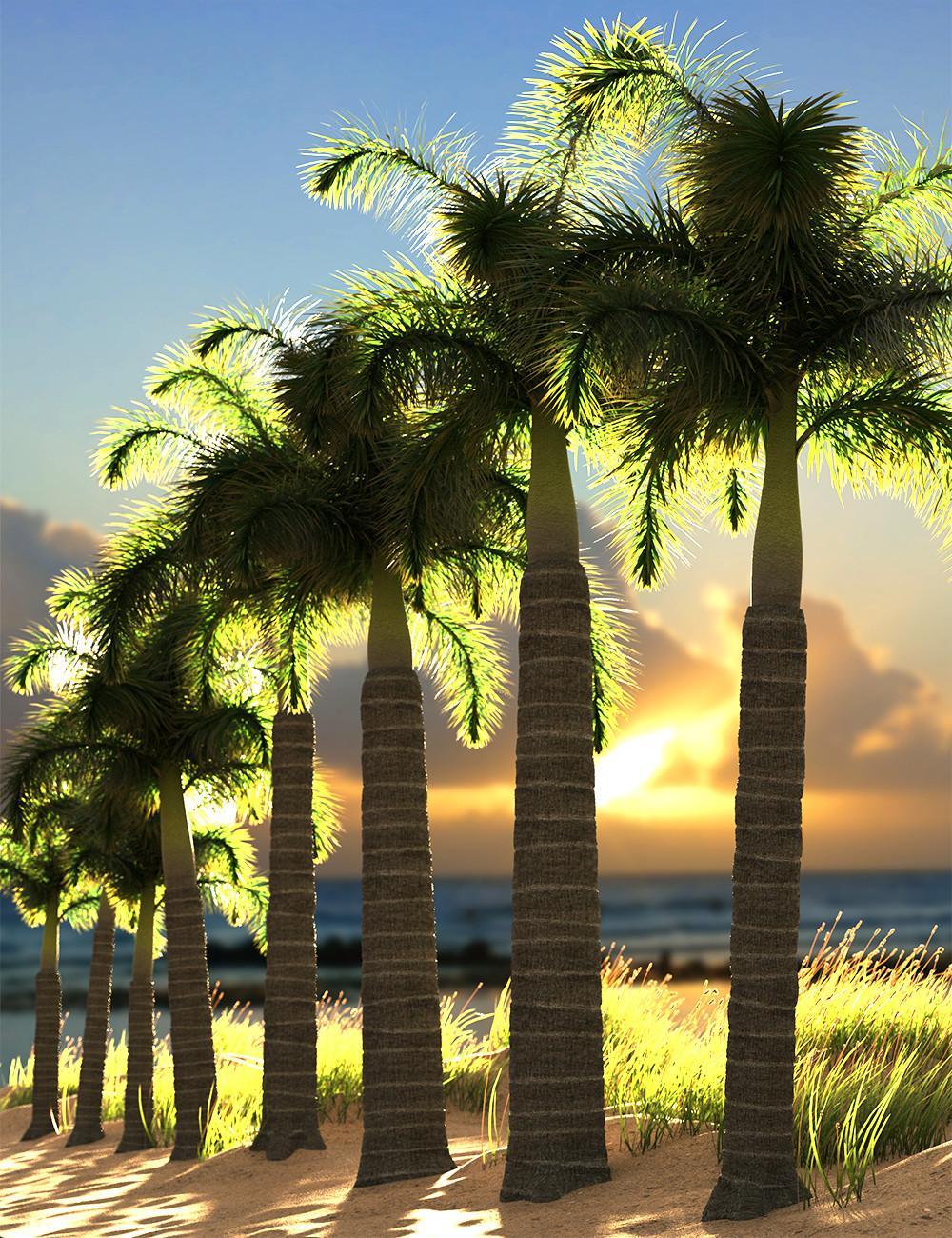 Predatron Foxtail Palm Trees