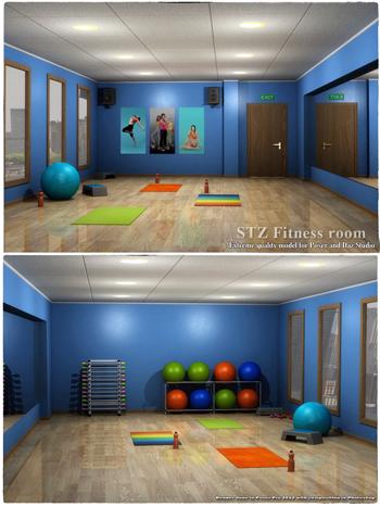 STZ Fitness room
