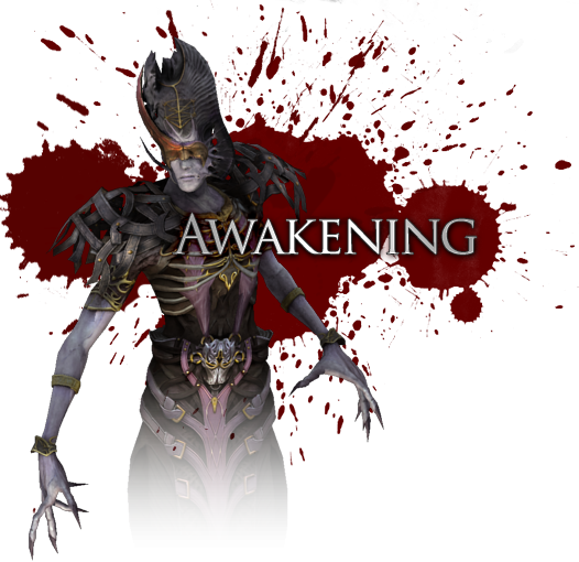 dragon-age-origins-awakening.1305360781.png