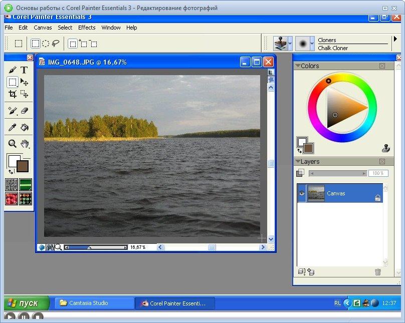 Corel Painter Essentials 3. (Базовый /Продвинутый) Обучающий видеокурс
