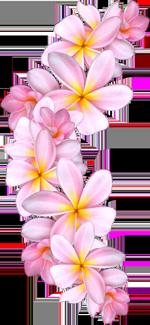 http://ipic.su/img/img7/fs/0_609c8_9f8df4d4_orig-kopija.1587625638.png