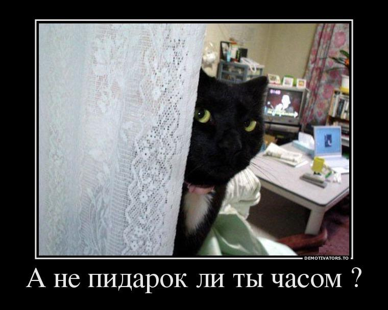 http://ipic.su/img/img7/fs/12311395_a-ne-pidarok-li-tyi-chasom-.1512669335.jpg
