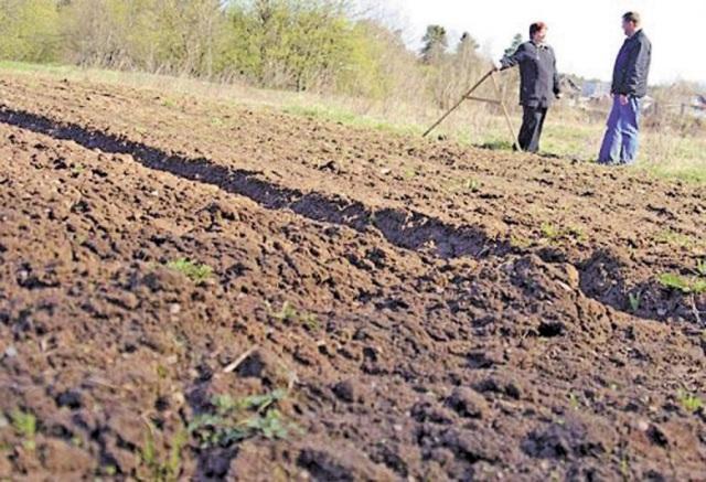 Бюджети Рівненщини поповнилися на 452 мільйони гривень від плати за землю