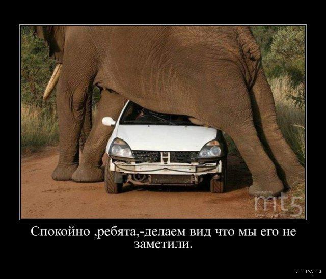http://ipic.su/img/img7/fs/1448000146_24019628af700f3a0ce322fce21b7646.1579230913.jpg