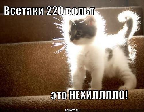 220-volt_12818943811.1380538065.jpg