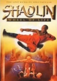 Секреты Шаолиня в 3Д / Shaolin Bootcamp 3D (2012) [2D, 3D / Blu-Ray (1080p)]