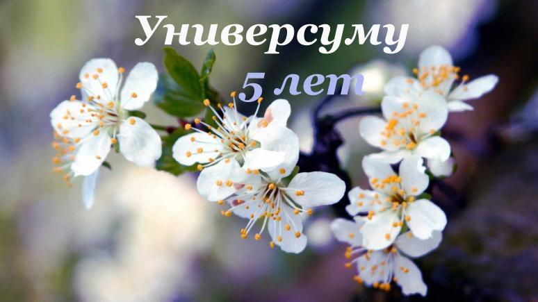 http://ipic.su/img/img7/fs/5let.1463787944.jpg