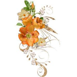 http://ipic.su/img/img7/fs/77485283.1415421908.jpg