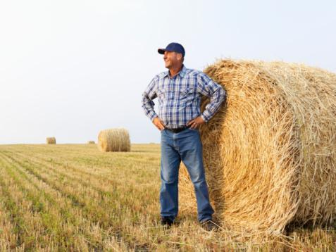 Молоді фермери Рівненщини можуть отримати 40 тисяч гривень