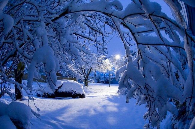 Новости Коломны   Снег #kolomnareplay Фото (Коломна)   kultura iskusstvo tvorchestvo v kolo poezia