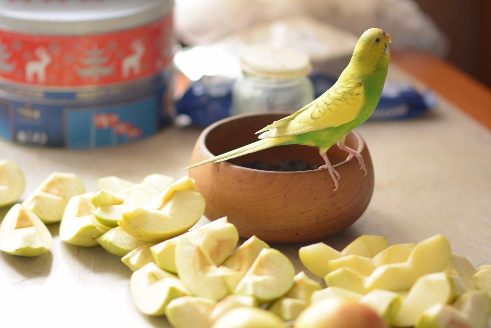 http://ipic.su/img/img7/fs/CHirik.1542738623.jpg