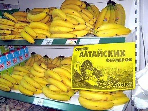 """Инициатором принятия """"диктаторских законов"""" был Янукович. Ему и еще ряду экс-нардепов объявлено о подозрении, - ГПУ - Цензор.НЕТ 3233"""