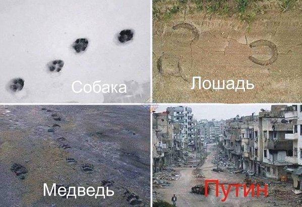 В течение минувших суток боевики осуществили 35 обстрелов, возле Семигорья был бой, - штаб - Цензор.НЕТ 9743