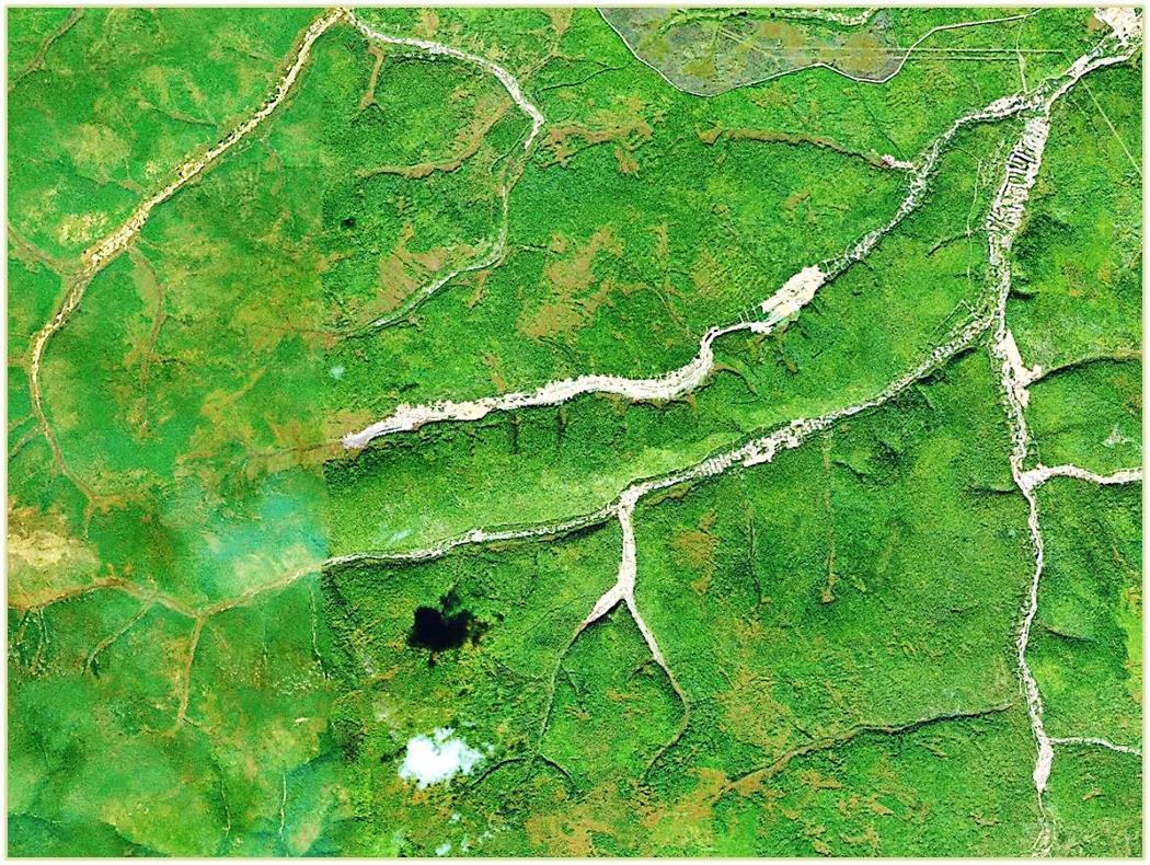 Примеры добычи россыпного золота открытым способом в Амурской области. Белым цветом на космических снимках виднеются преобразованные водотоки, где была разрушена естественная растительность (за исключением облаков)