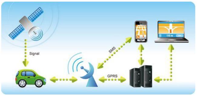 Что можно сделать с помощью любого GPS Треккера Онлайн?