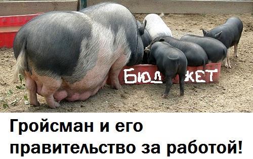 http://ipic.su/img/img7/fs/Groysman_pravitelstvo_za_rabotoy.1476621666.jpg