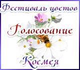 Радуга рукоделий Kosmeyagolos.1562158642