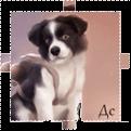 http://ipic.su/img/img7/fs/Prozrachnavkaost(2).1365297096.png