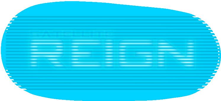 Satellite_Reign_Logo.1447617129.png