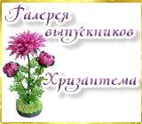 Галерея выпускников Хризантема Anons.1525413164