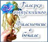 Галерея выпускников  Фаленопсис в бокале Anons.1559993148