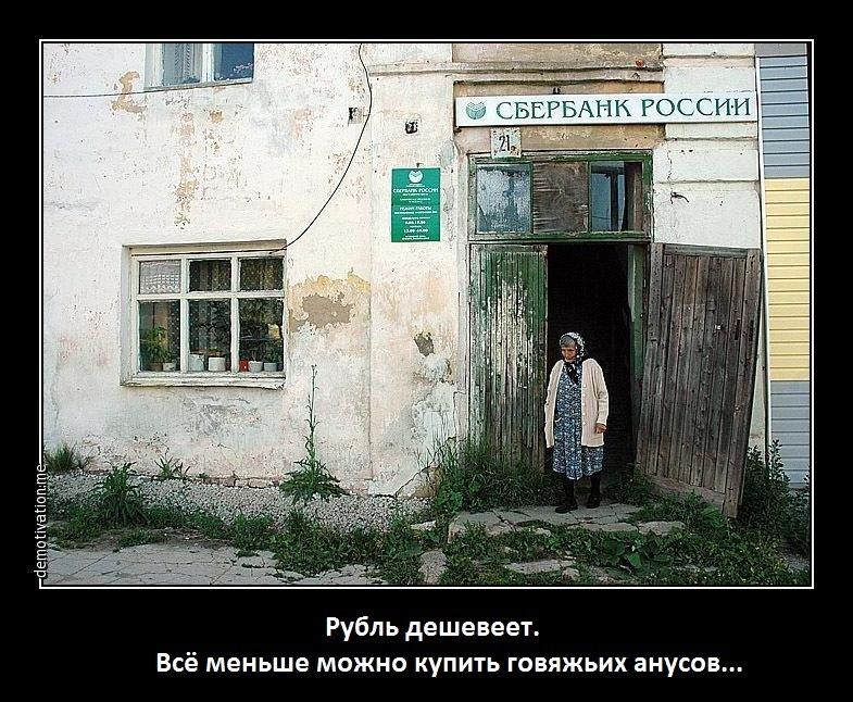 Павленко: Экспорт украинских агропродуктов в Россию упал в 4 раза - Цензор.НЕТ 2343
