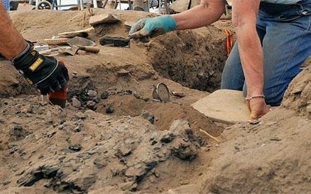 Humo qushi arxeologlarda