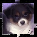 http://ipic.su/img/img7/fs/avka(2).1365297027.png