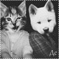 http://ipic.su/img/img7/fs/avtarost.1365750754.png