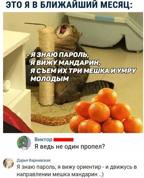 http://ipic.su/img/img7/fs/bSn6g8IHmc4.1544084143.jpg