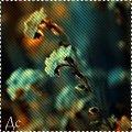 http://ipic.su/img/img7/fs/cats332.1365848035.jpg