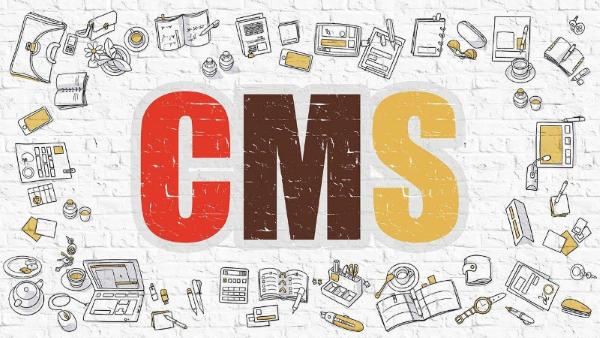 Какие CMS приходится раскручивать сеошнику?