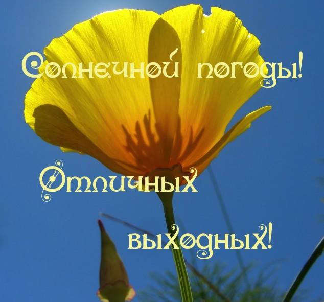 kiss_69kb.1524301211.jpg
