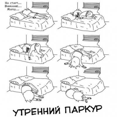 http://ipic.su/img/img7/fs/pCjiI8x40Vc.1412967696.jpg
