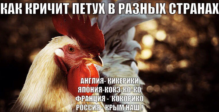У нас уже нет тех золотовалютных резервов, которые мы могли использовать для поддержки рубля в 2013 году, - помощник президента РФ - Цензор.НЕТ 7765