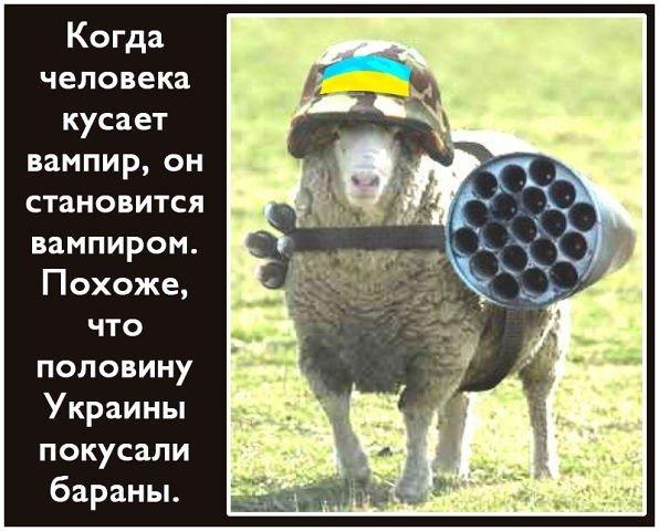 Киевские марафонцы собрали 30 тысяч гривен для военных - Цензор.НЕТ 3731