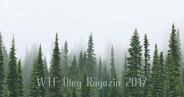 здесь был лес. ВТФ Олег Рогозин 2017