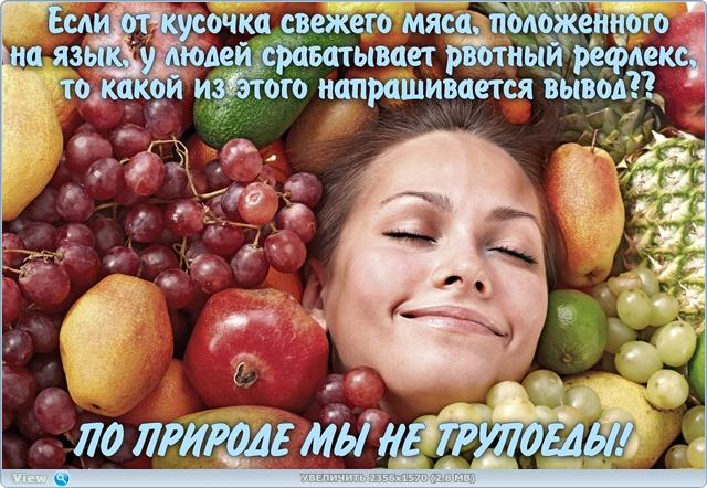 http://ipic.su/img/img7/fs/thumb.1483553741.jpg