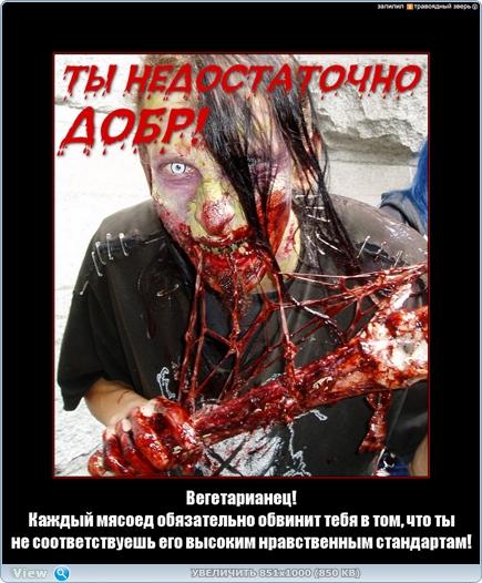 http://ipic.su/img/img7/fs/thumb.1483998216.jpg