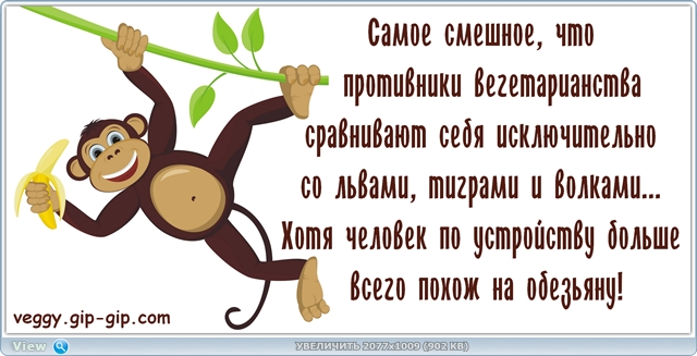 http://ipic.su/img/img7/fs/thumb.1484517337.jpg
