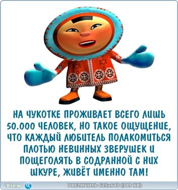 http://ipic.su/img/img7/fs/thumb.1485606790.jpg
