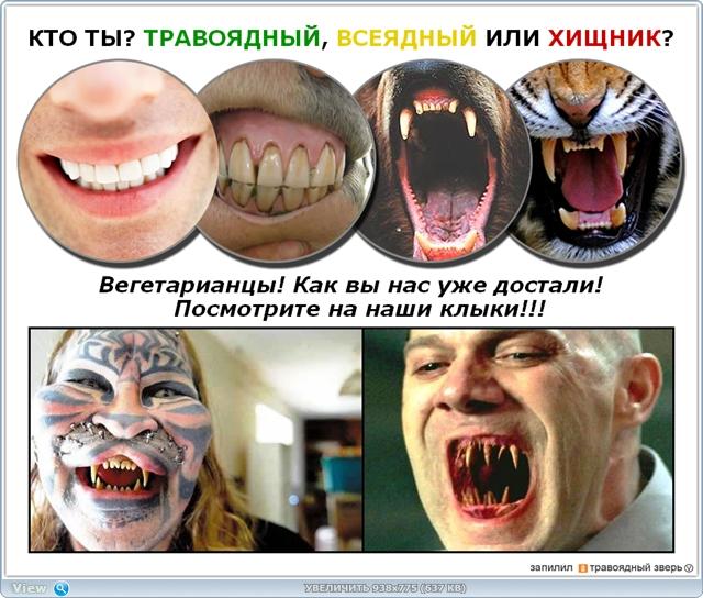 http://ipic.su/img/img7/fs/thumb.1485889788.jpg