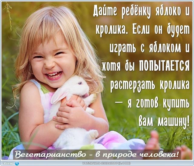 http://ipic.su/img/img7/fs/thumb.1485889970.jpg