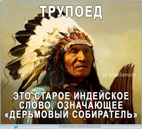 http://ipic.su/img/img7/fs/thumb12.1482218513.jpg