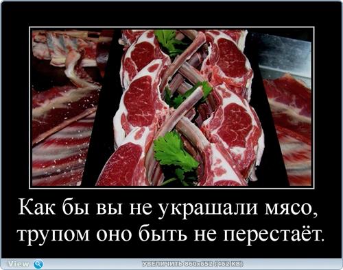 http://ipic.su/img/img7/fs/thumb13.1482218515.jpg
