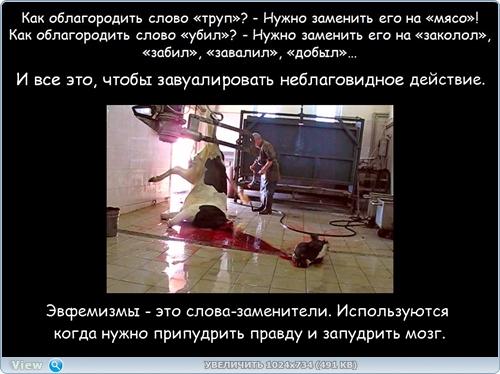 http://ipic.su/img/img7/fs/thumb16.1482218523.jpg