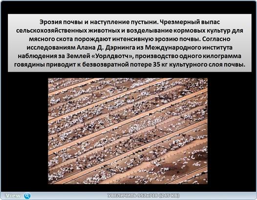 http://ipic.su/img/img7/fs/thumb2.1484374717.jpg