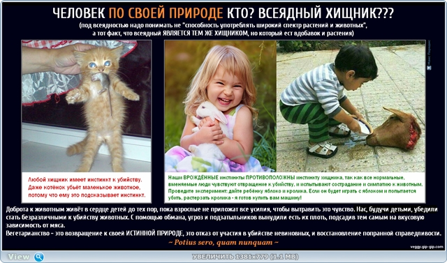 http://ipic.su/img/img7/fs/thumb2.1485890696.jpg