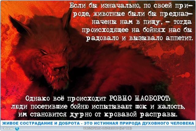 http://ipic.su/img/img7/fs/thumb3.1485890743.jpg