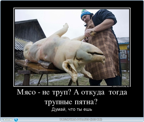 http://ipic.su/img/img7/fs/thumb6.1482214197.jpg